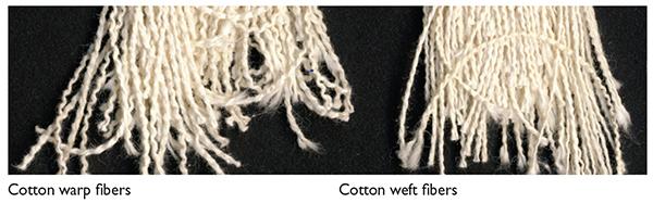 Cotton Warp v Weft Fibers